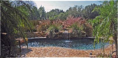 lagoon pool with natural drystack stone wall and planter